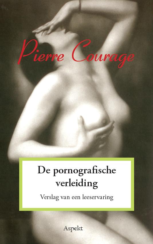 Boek: De pornografische verleiding